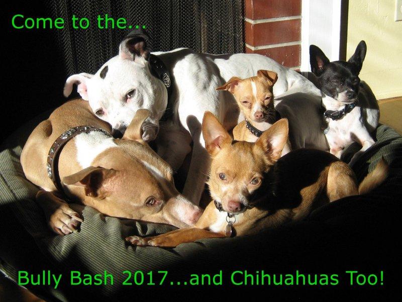 2017.03.18-Bully Bash